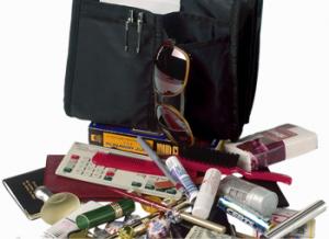 removable purse organizer insert